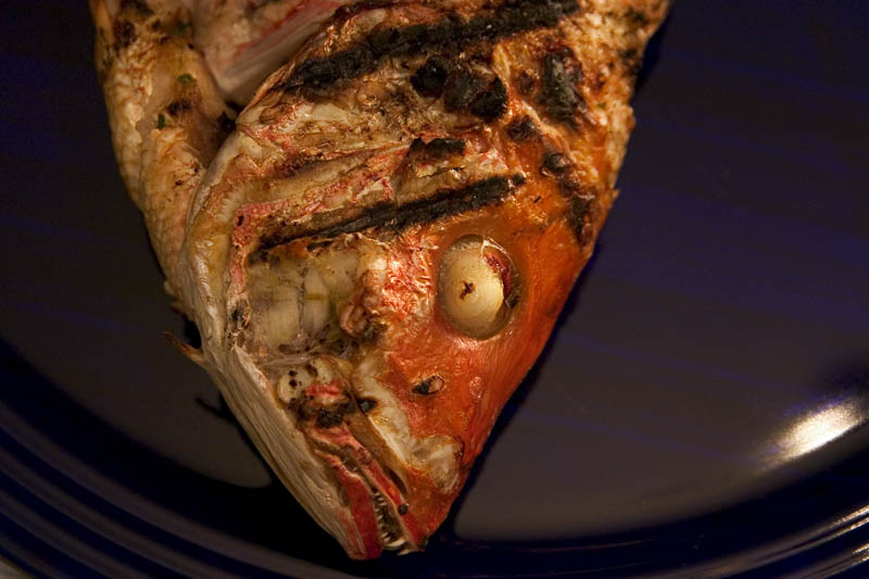 Picture of a grilled red snapper